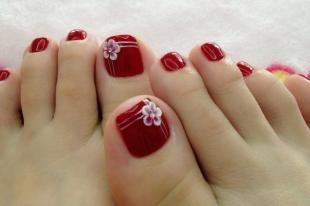 Рисунки ромашек на ногтях, красный педикюр с белыми цветами